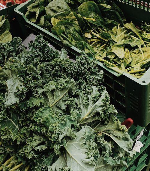 Kale vs Espinacas